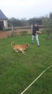 Emma spielt mit Dotti